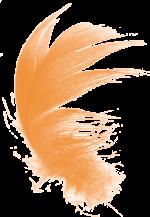 pirko-oranz